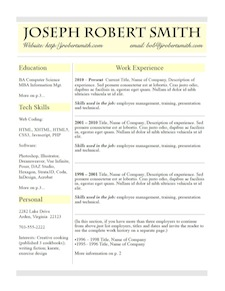 resume design example