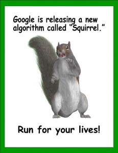squirrel algorithm