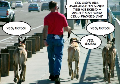 How many employers are keeping employees on electronic leashes?